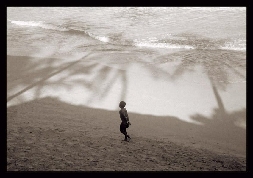 Шри Ланка, Диквелла.При сильном увеличении уже при обработке обнаружил это http://www.photoline.ru/picture/1204359393