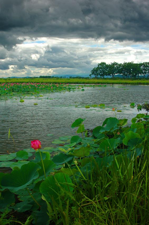 Цветочное озеро. Хабаровский край.Таким оно было в апереле: http://www.lensart.ru/picture-pid-138c4.htm