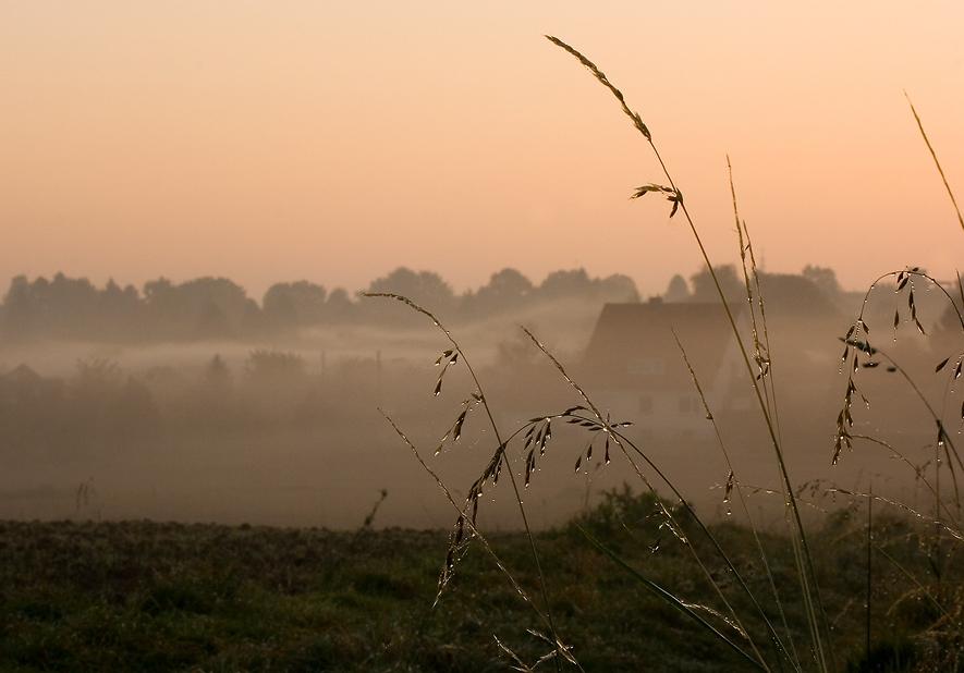 Ты знаешь, как рождается туман?Не торопясь, частица за частицейНа землю небо падает, ложится.Покоя, благодати океан.Ты хочешь это таинство понять?Тогда замри и тишину послушай.То не туман, то праведные души,К земле спустились, чтоб её обнять.А утром, только солнышко взойдет,Подует ветер, и туман растает.И почему-то очень грустно станет:Какая же тебя дорога ждет?Ольга Вайсбекер