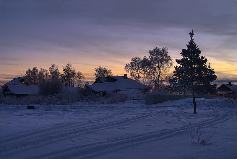 Вологодская обл., с. Прилуки, январь 2008 г.