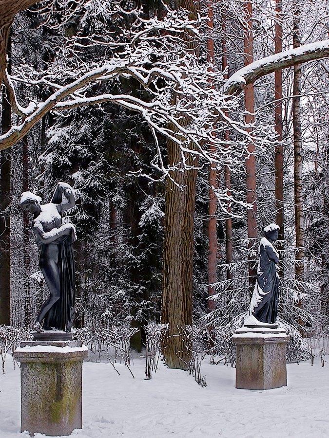 пейзаж, пейзажи, Питер, Петербург, Павловск, зима, снегопад, прогулка(полный exif можно посмотреть, скачав картинку)