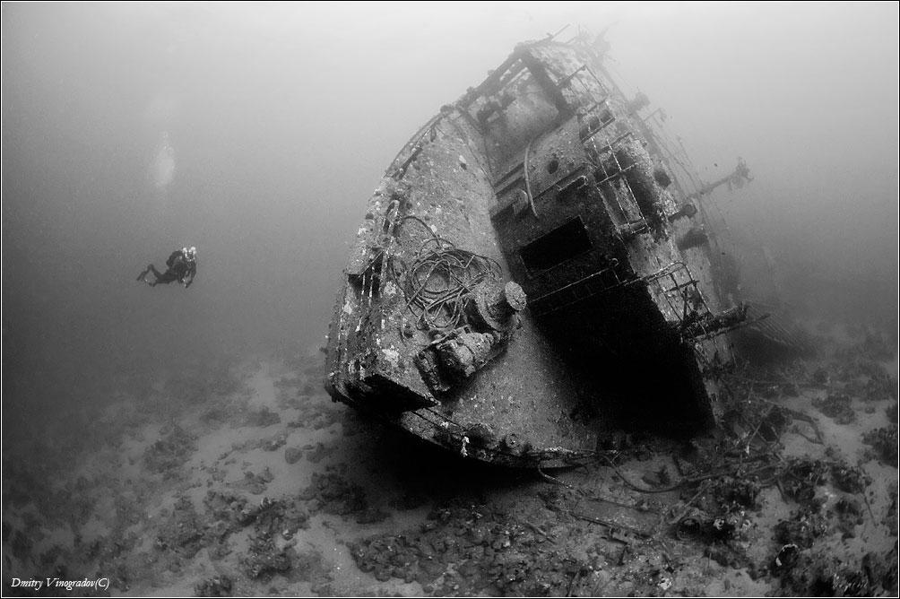Красное море. Риф Абу Нухас. Затонувшее судно Кимон. Поздравляю всех дайверов и водолазов с праздником! Удачи и четности!