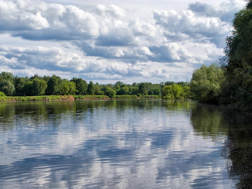 Начало лета. Река Клязьма. Применен псевдо-полярик.