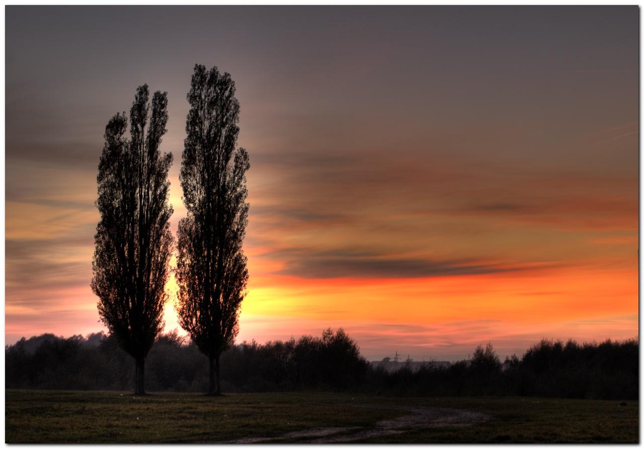 природа,закат,двое,пейзаж, вечер, верность