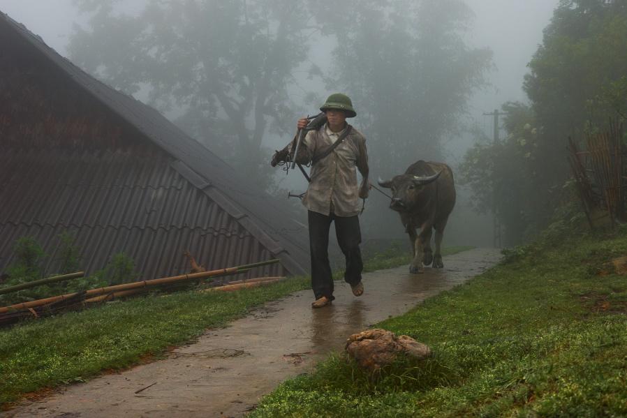 Высокогорная деревенька, непрекращающийся дождь, ещё не совсем проснувшийся пахарь бредёт привычной дорогой. Плуг через плечё, буйвол, каска и руки - все, что нужно для ежедневной работы в поле.