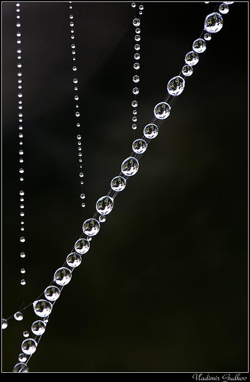 или Парад планет, как совершенно точно заметила Наташа http://www.lensart.ru/user-uid-120f.htm. Искренне поздравляю Костю и Руслана, выданного Сергея, сознавшегося Игоря, а также всех наших друзей, кто отмечает День Военно-Космических Сил как свой профессиональный праздник. Буду рад, если они в этом сознаются всенародно...;-) Спасибо  также Игорю Бакбардину за глубокие и бесценные знания о наших праздниках! :-)