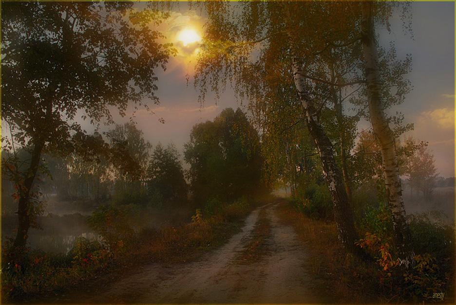 ....последнее утро бабьего лета...Меня увлек здесь световой источник в облачке, который образовал как бы воронку в небушке, тоннельчик, ну, как - световой поток - на который слетаются светлые души, вовлекаемые излучением ...   Некая вороночка излучения...