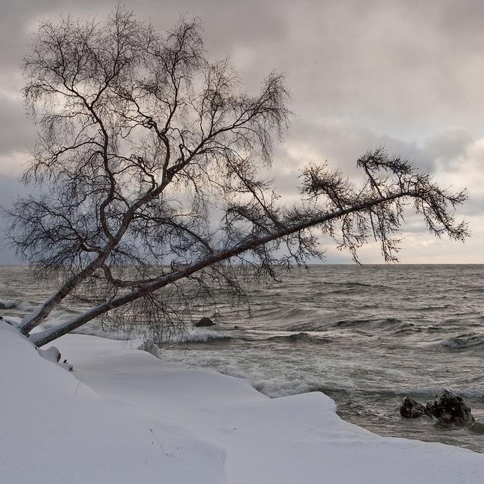 Бурятия, Байкал, посёлок Турка. ноябрь 2009 г.