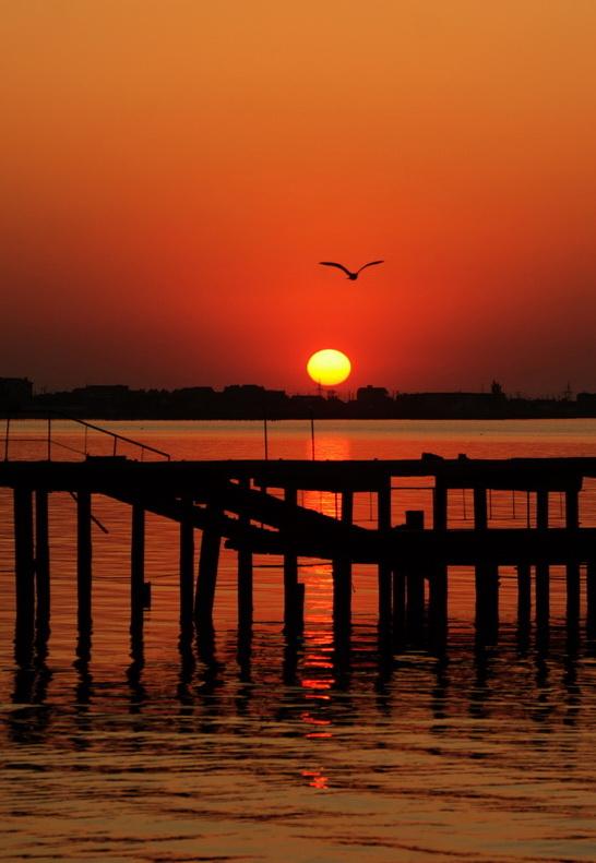 Единственный случай моего мужества во время отпуска в Крыму - подъем в 5 утра ради того, чтоб встретить рассвет...