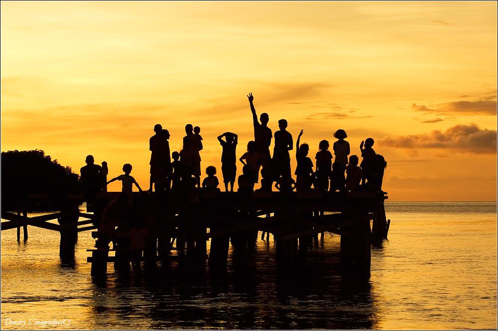 Новая Гвинея.
