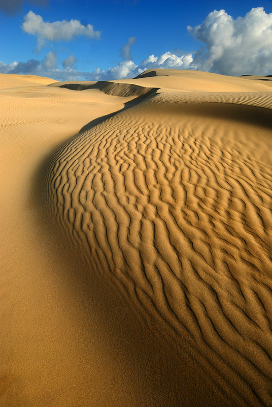 Stockton Bight, Port Stephens NSW, AustaliaПустыня меня очень впечатлила... Вроде бы цивилизация и недалеко, а чувствуешь себя один на один со всем миром... можно кричать, бегать, прыгать, валяться на песке, прятаться в тени бархана и есть яблоко, медленно брести в даль, слушая скрип песчинок под ногами... И еще. Пустыню можно фотографировать в любое время суток, когда есть свет.http://FotoForge.net