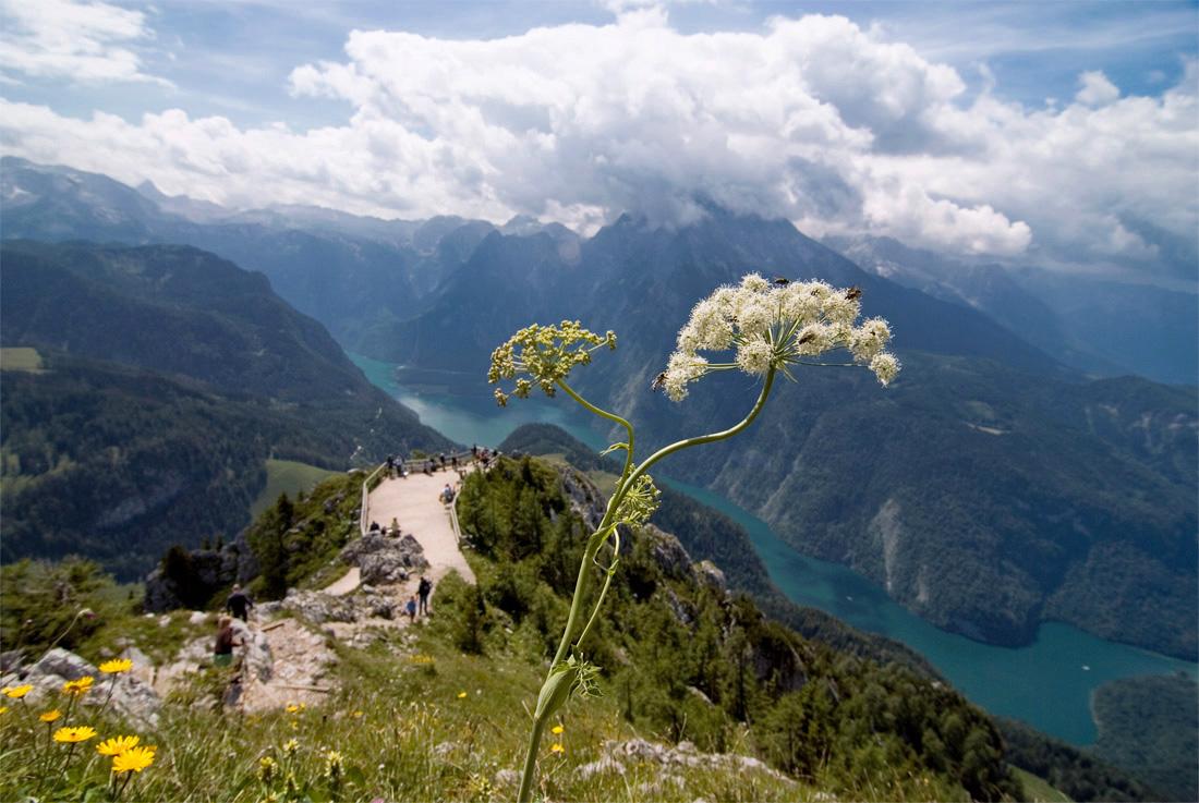 Германия.Альпы.Бавария.Высота 1874 м.Внизу Королевское озеро.