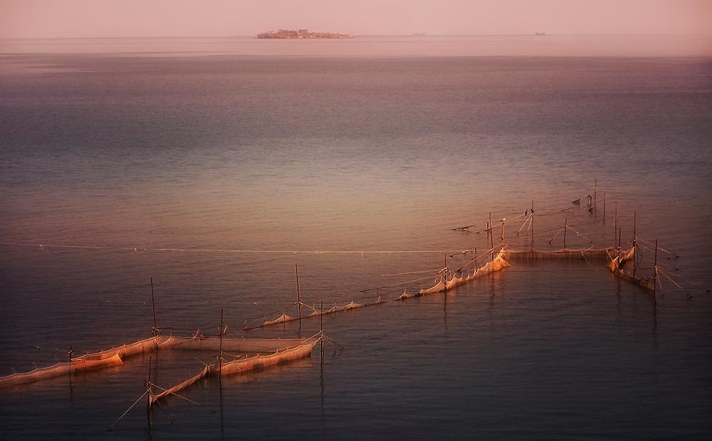 Утро... море... сети...