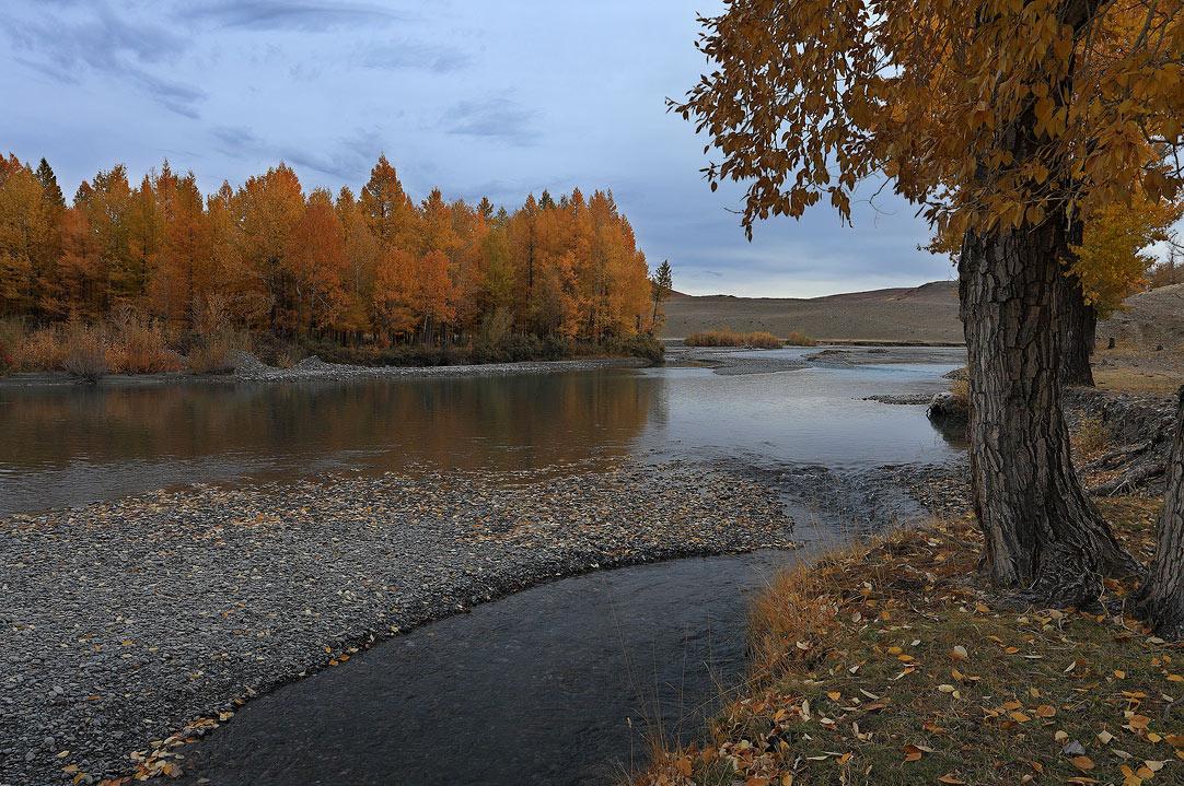 Горный Алтай, Кош-Агачский район, река Чаган-Узун, сентябрь 2010 г.Другие фото Алтая у меня на сайте www.stv-foto.ru