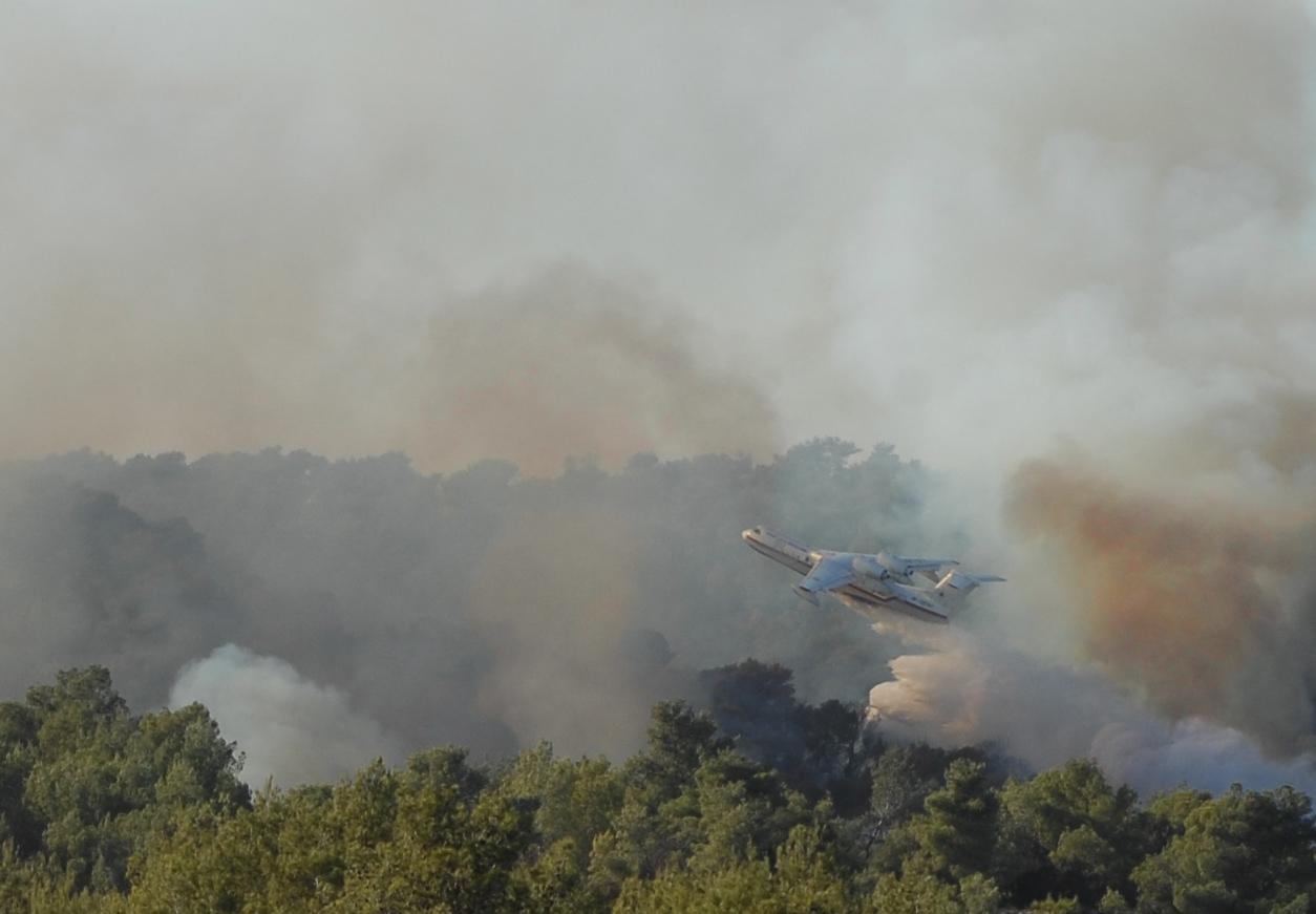 Это фото сделано вчера на пожаре, который бушует в Израиле уже 4 дня. Выгорело 5 миллионов деревьев. Столько, сколько было их в Палестине на момент образования Израиля.Все пожарные самолеты летели достаточно высоко. И только этот  подлетел к пожару снизу от рядом расположенного оврага. Это требует большого мужестваи сноровки.