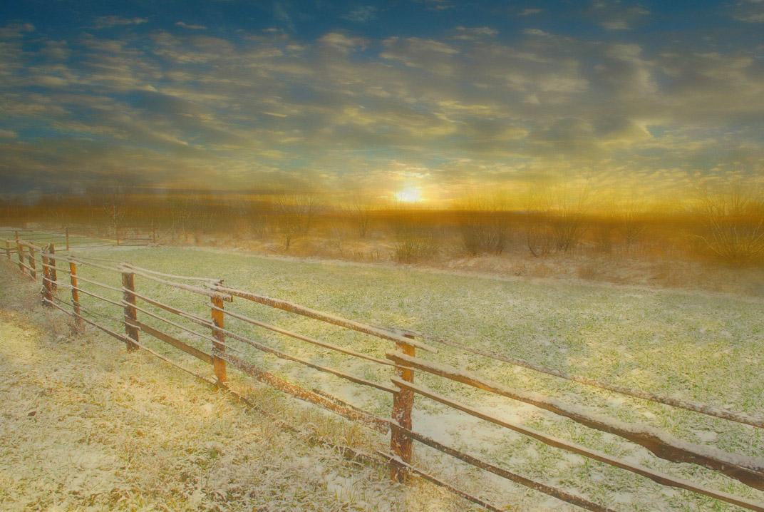недавно бродила здесь белая лошадь, похожая на единорога...