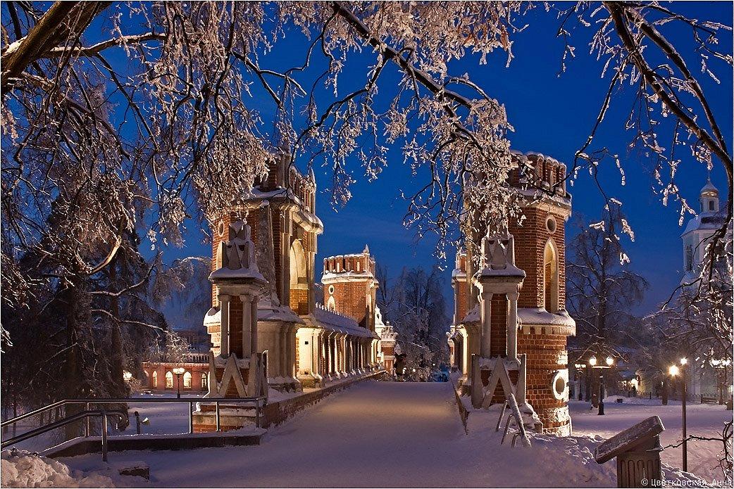 4 января 2011 г. Царицыно.