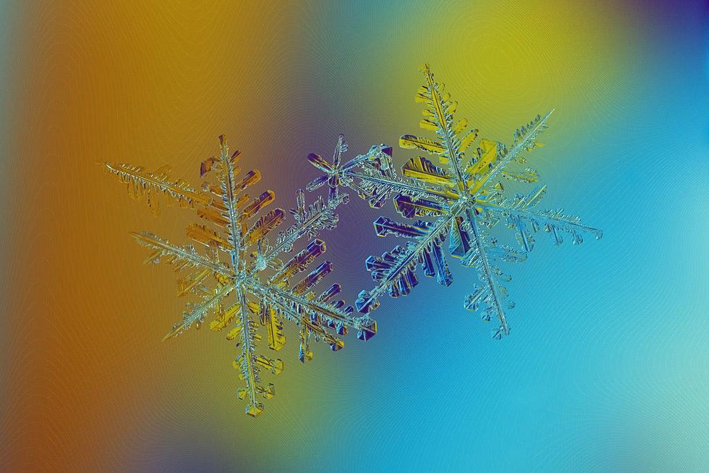 Которую ночь тишина между нами, И мир в ожиданьи небесной репризы, Послушай, как снег дирижирует снами, И ветер играет негромко «К Элизе», На ветках грызут ожидания белки, И лес открывает для сердца кормушки, Там, душу окрасив в оранжево-белый, Твой век на крыльце новогодней избушки