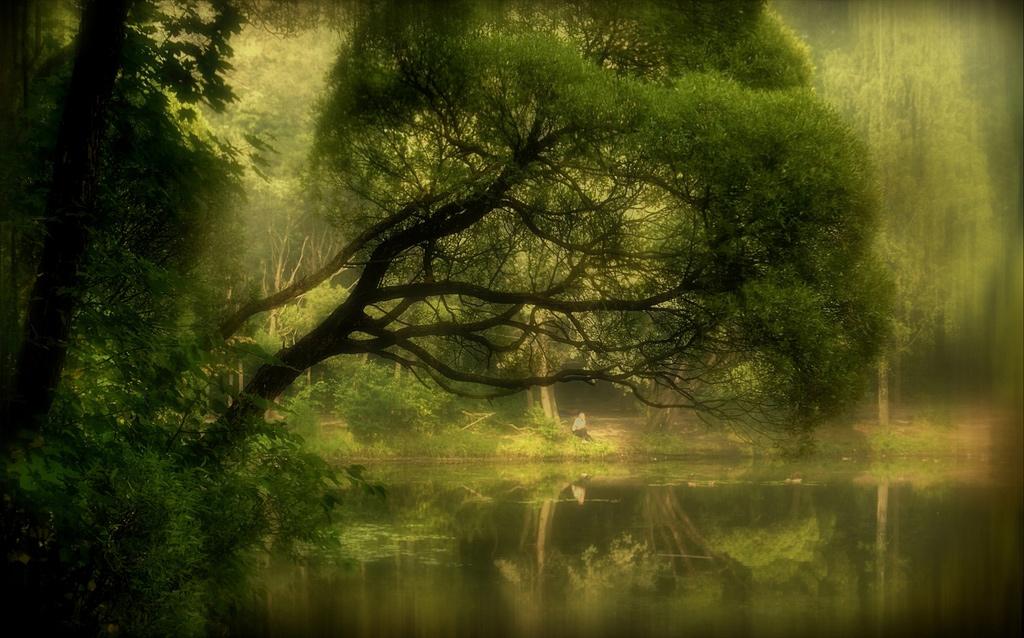 """Утро одиночества...Вот сбылось пророчество...Гляну в отражение-Сон среди картин...А туман над озеромСтелет заговорщицки...Будто сообщая мне:""""Снова ты один""""...© Undefined"""