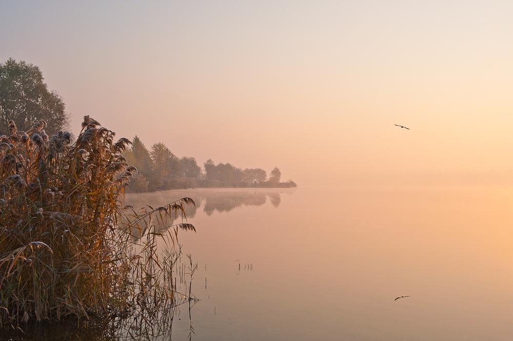 Озеро Алмазное. КиевБольше фото этого утра..http://l-z-foto.livejournal.com/27555.html
