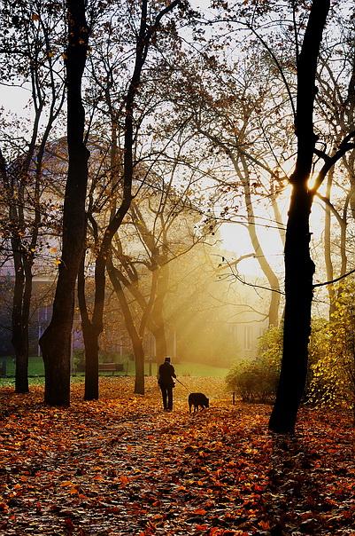 Mесто фотографирование, парк Stromovka-Прага-7