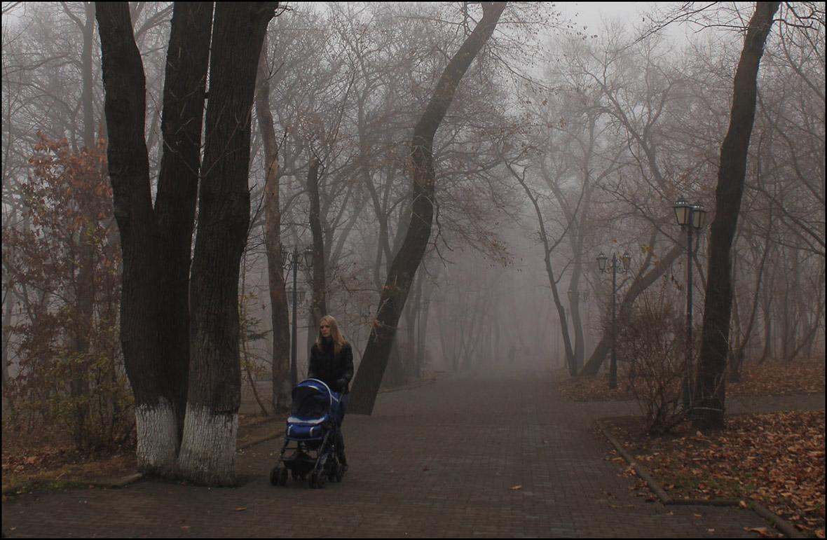 Последний теплый день ноября.. Было очень  тихо,тепло и туманно, а дальше холода...