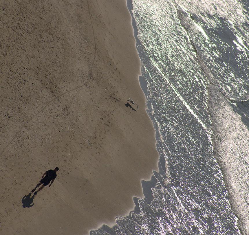 Нетания ноябрь 2011, Израиль, птица, берег, море