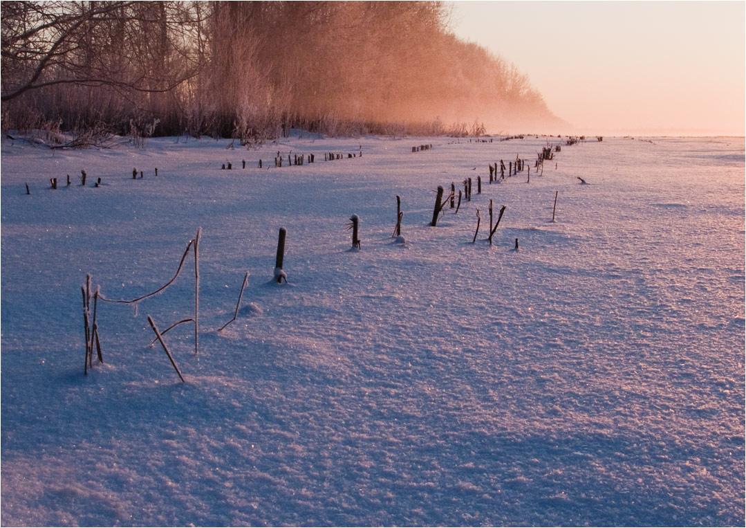 Крепкий морозец, лёгкая позёмка, закатный свет, туман...Canon powerShot G9 kamera.