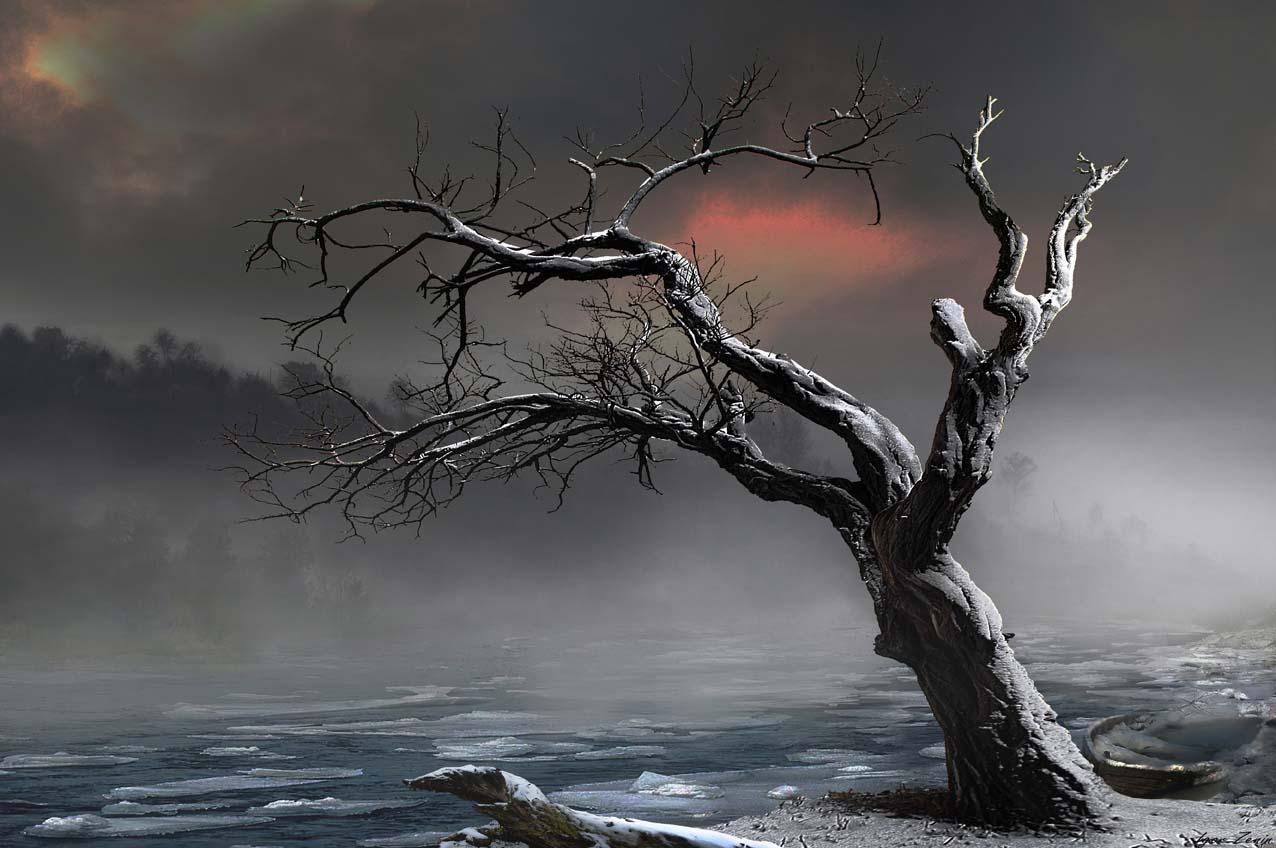 www.zeninphoto.com     зима,красота