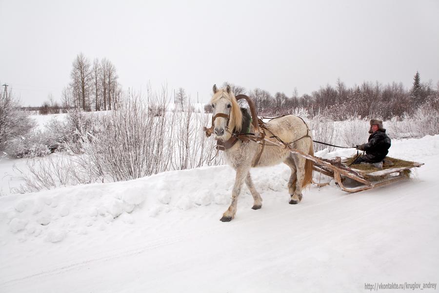 """""""Скачет конь. Простору много.Сыплет снег и стелет шаль.Бесконечная дорогаУбегает лентой вдаль.."""""""