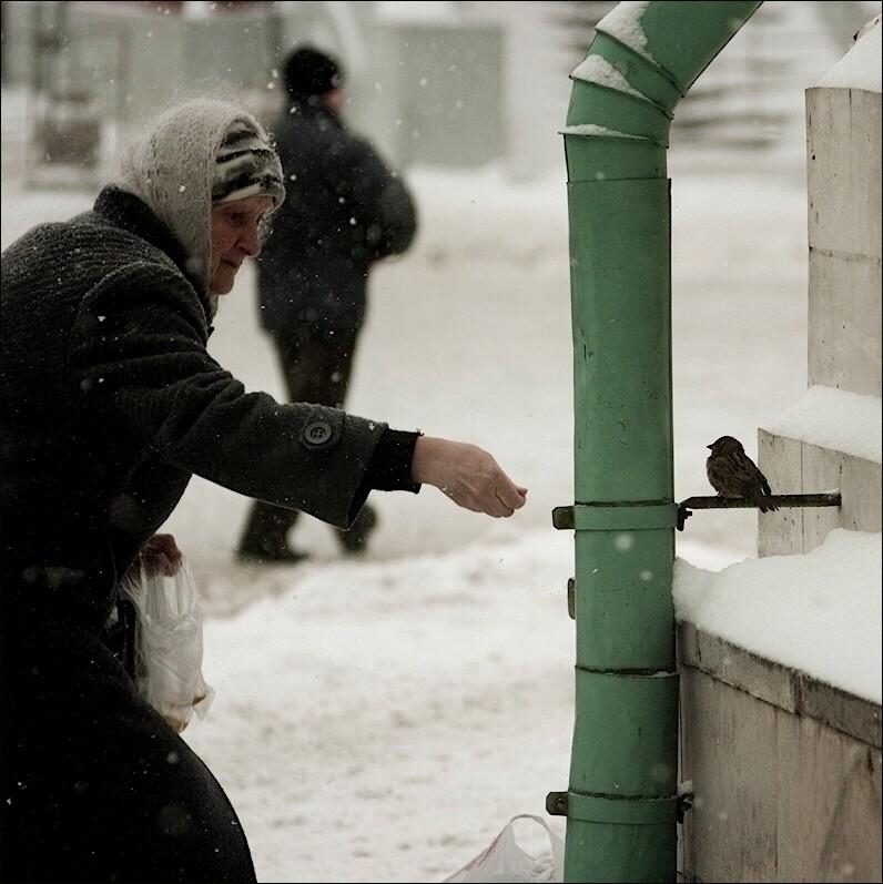 http://www.lensart.ru/picturecontent-pid-4ce04-et-d709be4