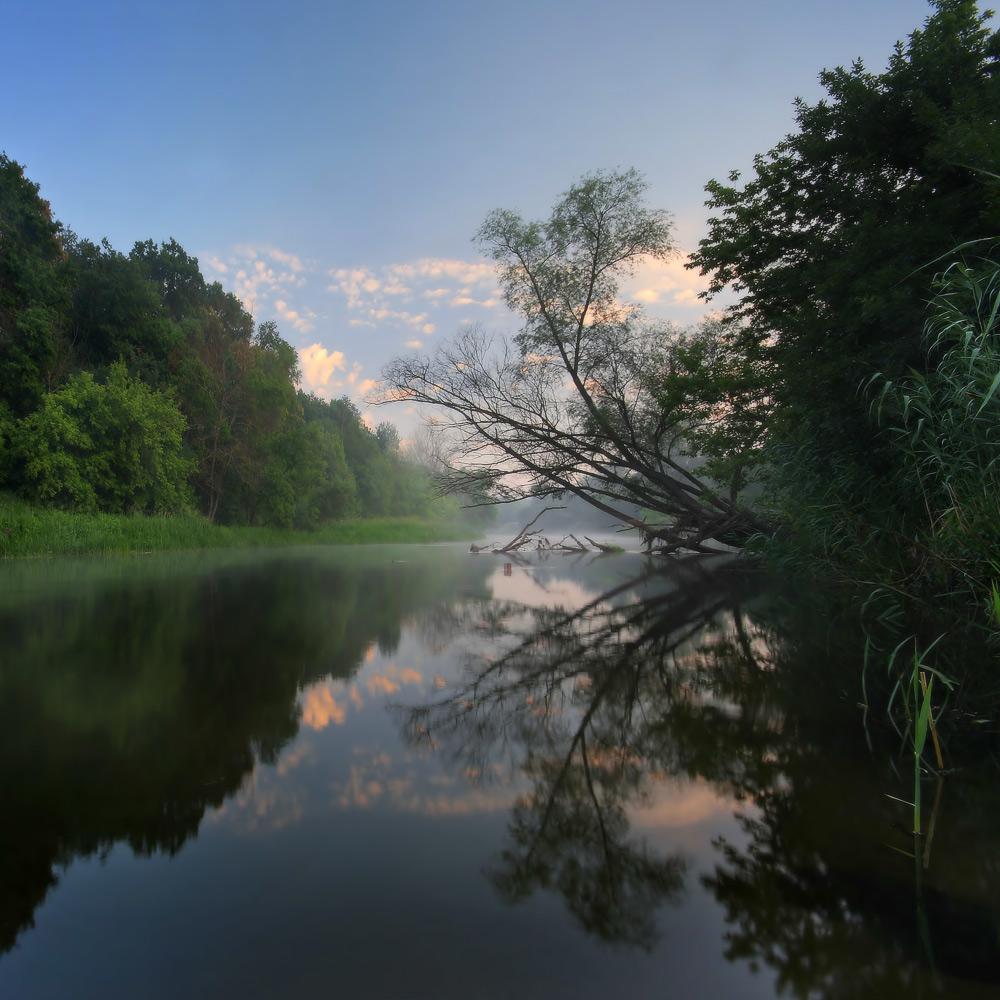 лето,река, рыбалка, туман, утро