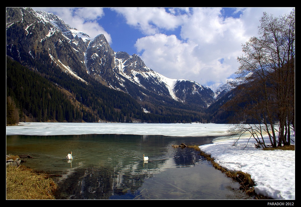 *  *  *Озеро Антерсельва лежит на высоте 1642 м, зимой полностью покрывается льдом и снегом. Лед начинает сдавать позиции лишь в апреле, и на освободившуюся гладь озера бесстрашно устремляются лебеди ... *  *  *Италия, Доломиты Южного Тироля, массив Валь Пустерия.
