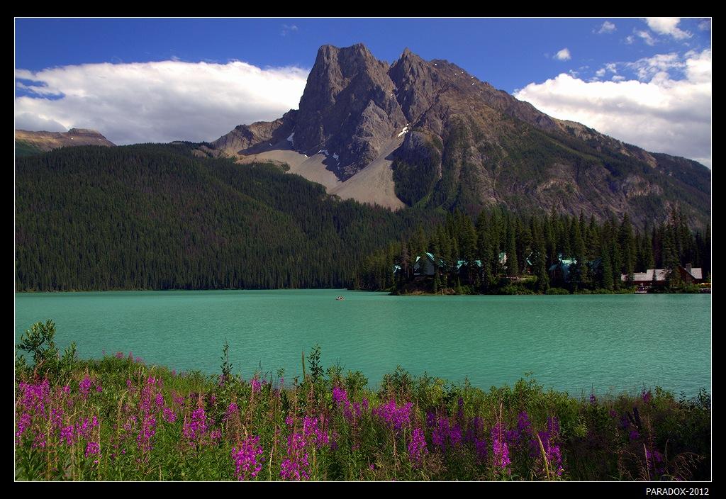 * * *Озеро Эмеральд в Скалистых горах Канады славится изумрудным цветом воды (этот цвет дал название озеру) и окружающей красотой горных берегов. Неожиданным оказалось появление на фото профиля Арлекина, взирающего в своем колпаке со склона массива Бургес ...   * * *Канада, Национальный Парк Йохо, озеро Эмеральд
