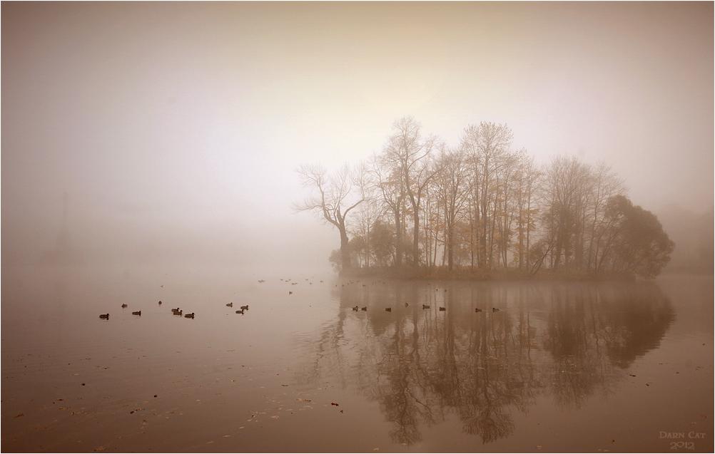 Туман в Царском селеПруд в центре Екатерининского парка, самый крупный из водоёмов города Пушкина, его размеры около 16 га. Был вырыт в начале XVIII века и заполнен водой из протекавшего здесь ручья Вангази, который был перегорожен запрудой.