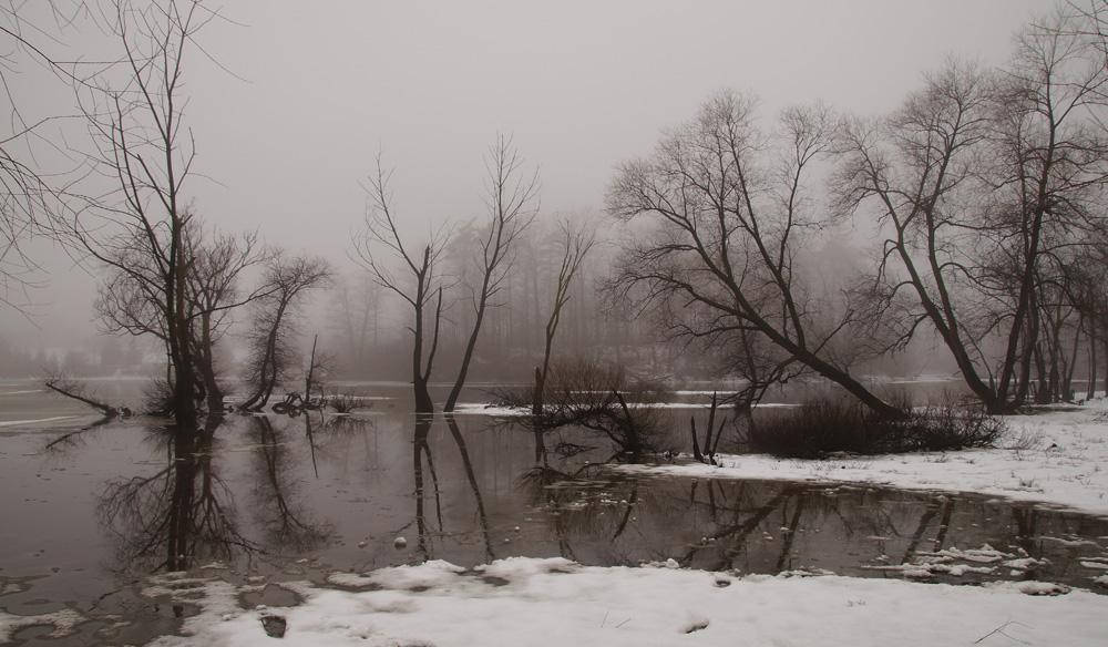 Вчера стоял туман, растаявший снег стекал в ручьи а они несли уже поток сюда, в долину.Сегодня с утра было уже плюс 15 а после обеда снега не осталось нигде. Завтра ожидаем минус 10.