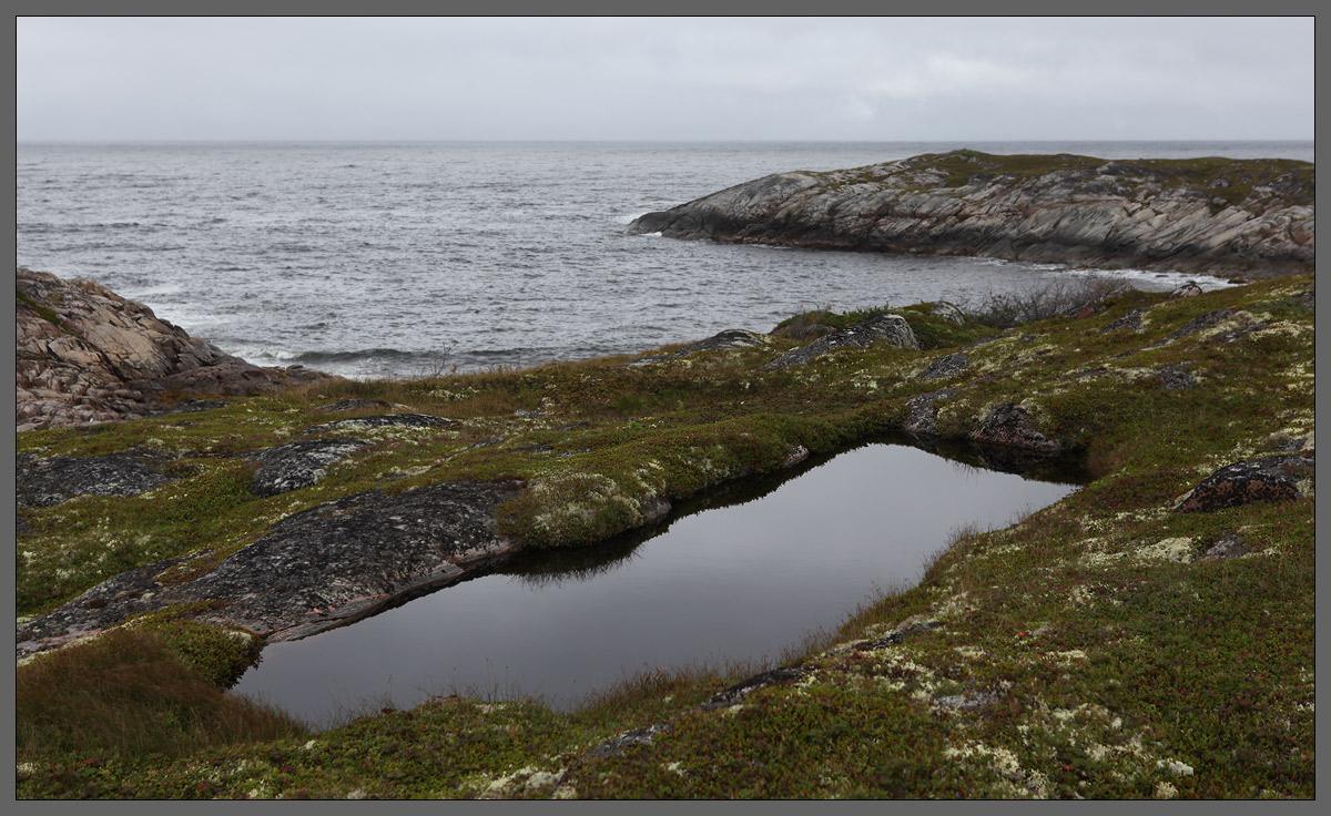 Белое море. Район острова Соностров, что южнее Керети. 06-08-2012, 12:53.