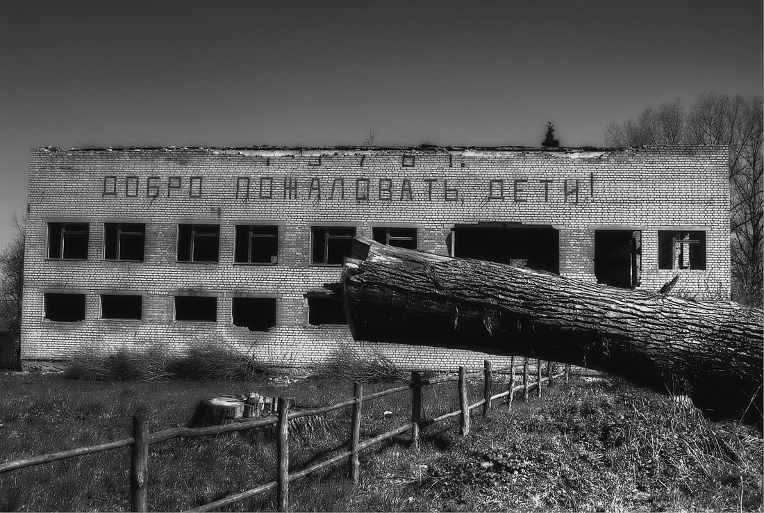 В одном из заброшенных поселений Брянской обл.Мобилофото на ходу. Без претензий на качество.