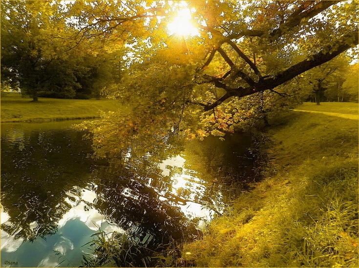 http://www.lensart.ru/picturecontent-pid-5fa0c-et-106ea9ae