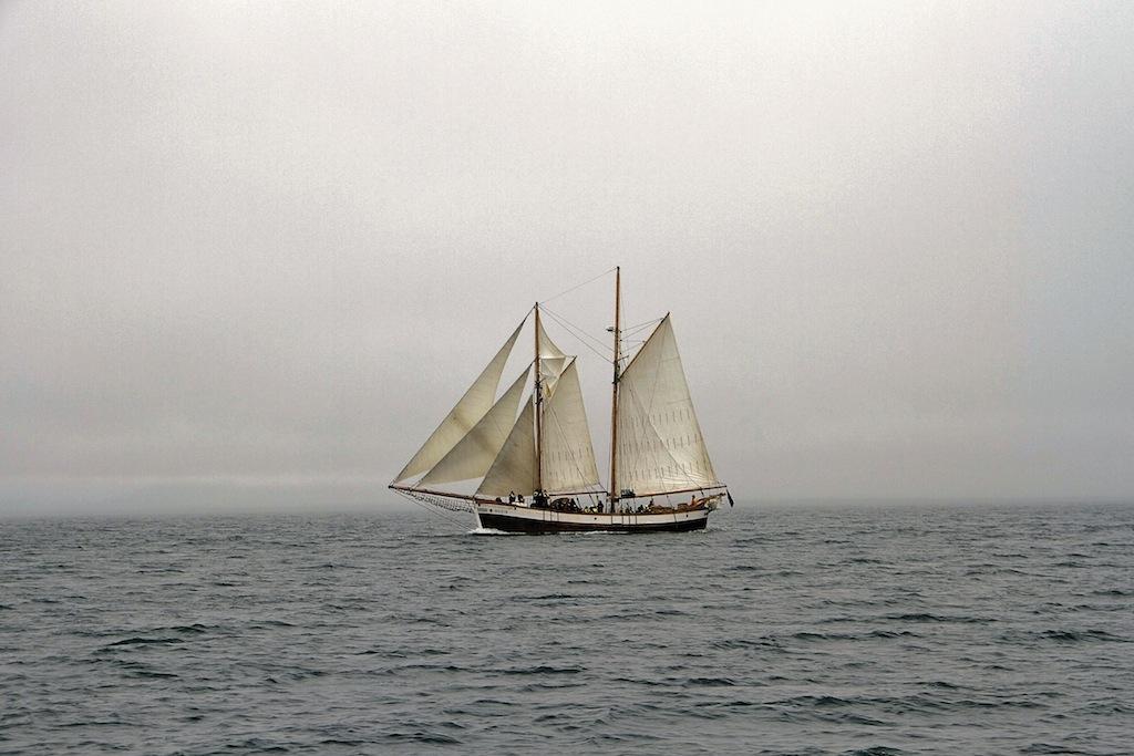 Фотография выполнена в Хусавике, Исландия в Июле 2013 г. с борта аналогичного судна по пути к китам.