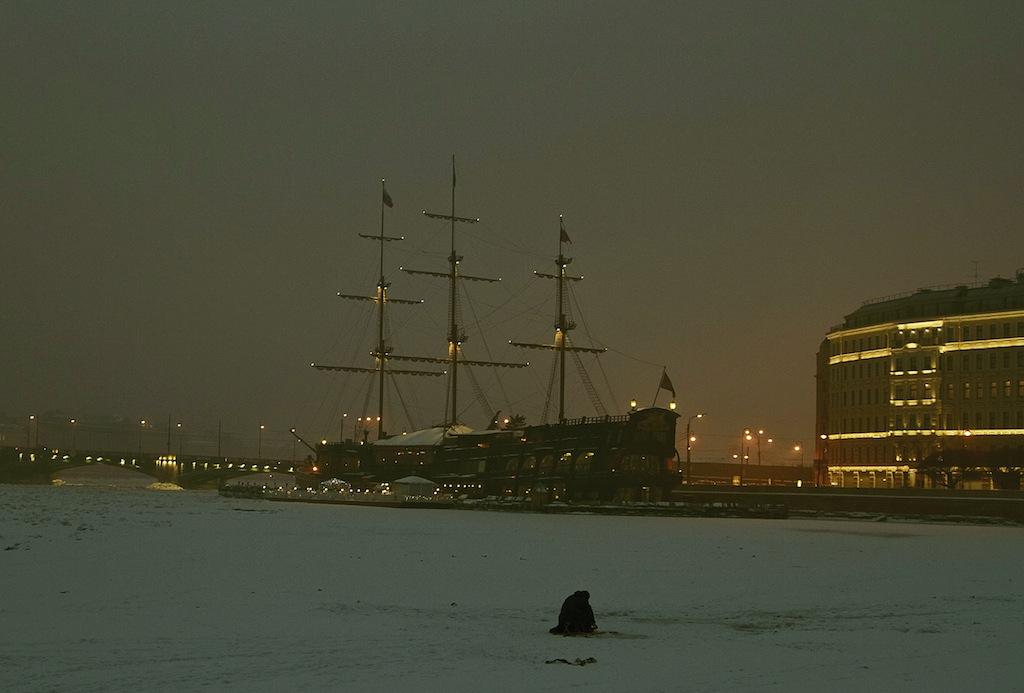 Санкт-Петербург, 7 Февраля 2014, вечерняя прогулка на Заячьем острове.