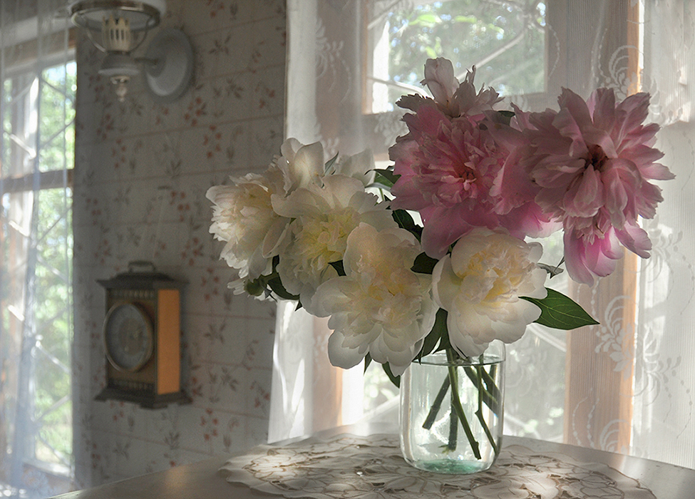 ...в их аромате детством подышать...пионы дача лето