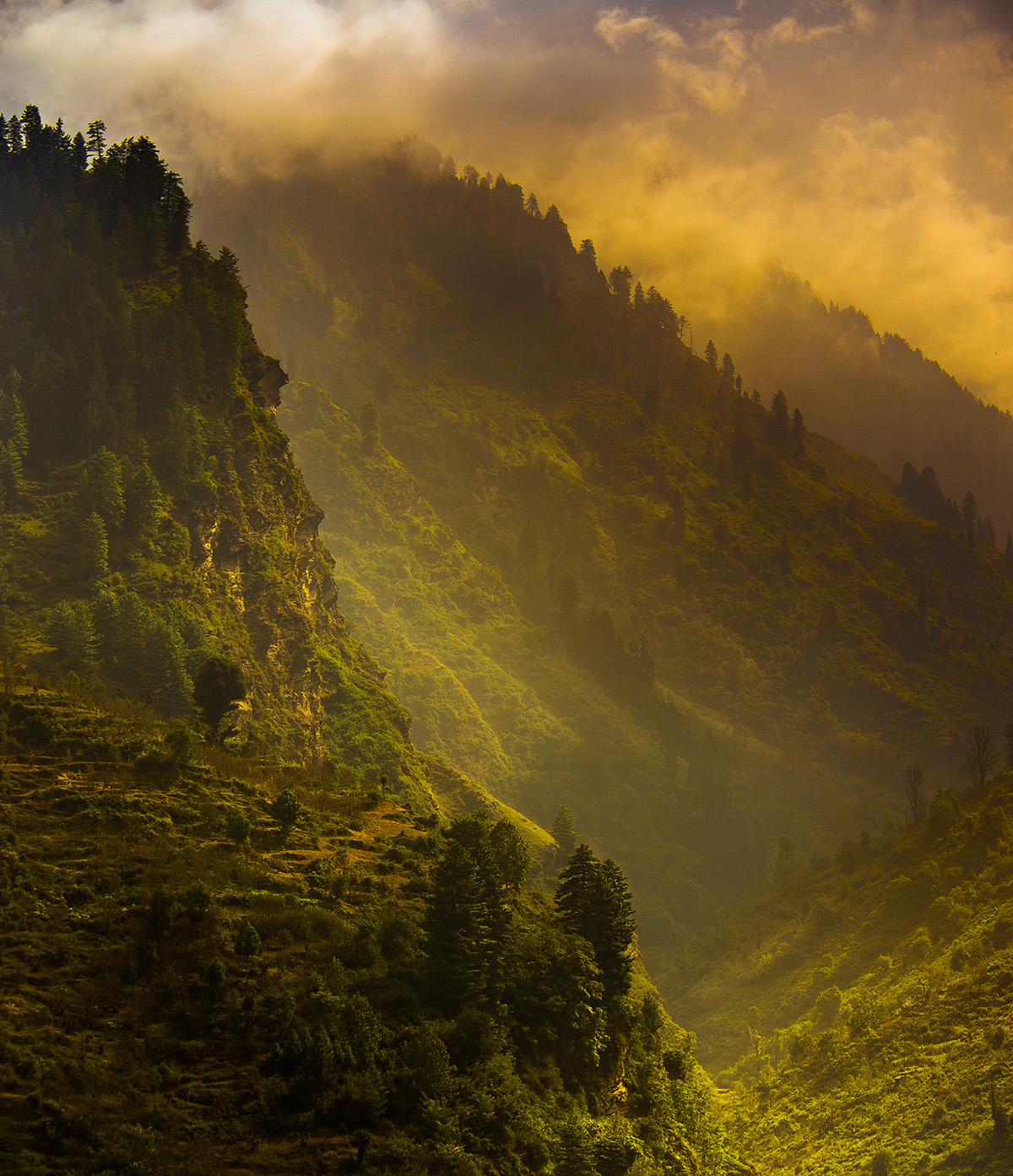 Гималаи, Индия, Нагар.