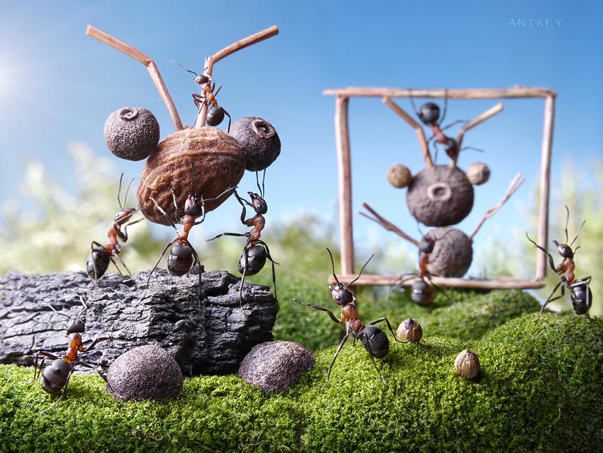 Известно, что египетские пирамиды отдыхают по сравнению с даже среднего размера муравейником. Это архитектура, а что с монументальной скульптурой? может быть эти непонятные сооружения вблизи муравейника прославляют муравьиного адмирала за открытие Америки 50 млн лет того назад?  http://www.youtube.com/watch?v=9ljtYv9Zk0I