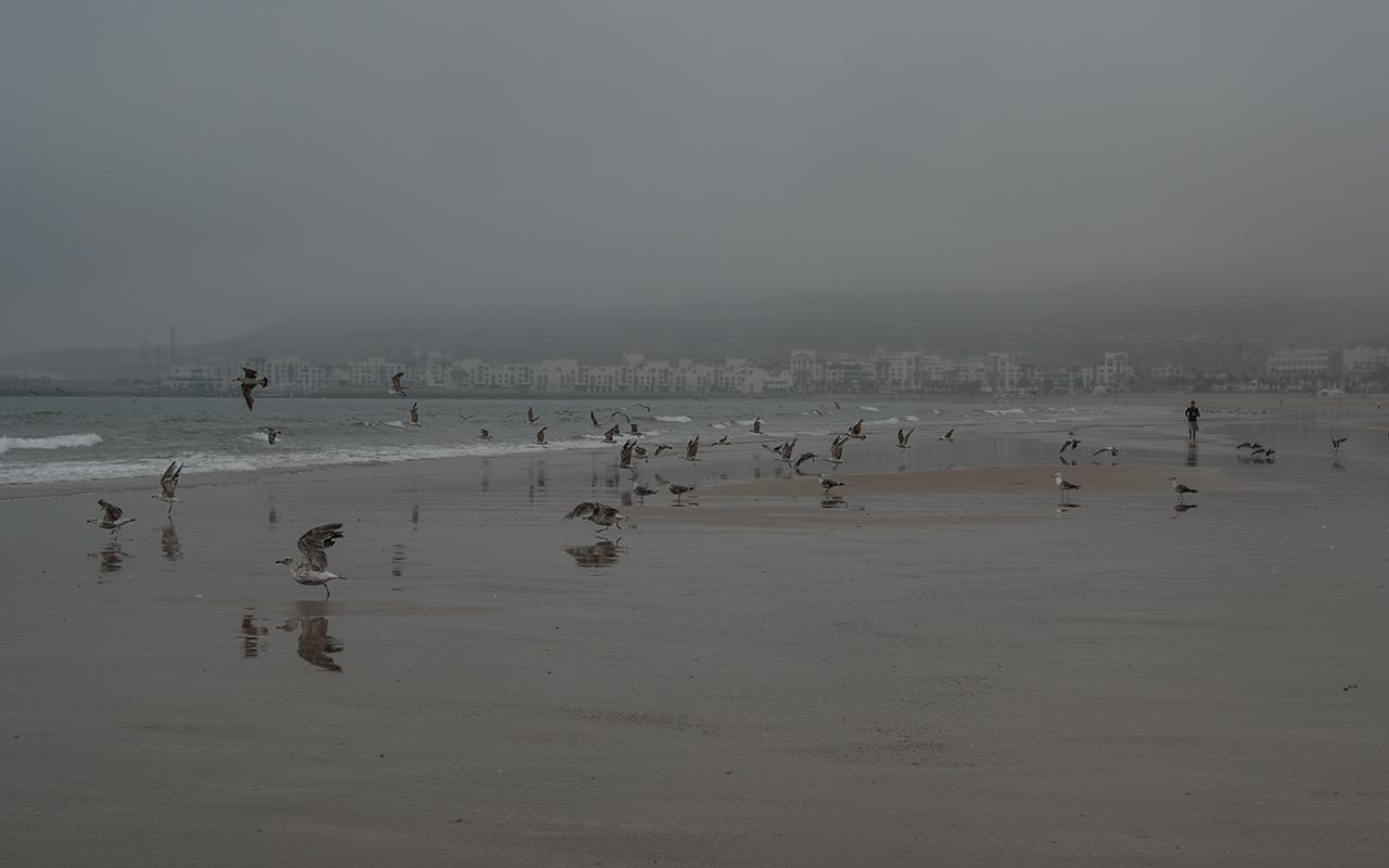 Атлантическом побережье Африки.Марокко, Агадир.Океан заметно влияет на погоду в Агадире. Утром здесь обычно туман, рассеивающийся лишь к полудню. …