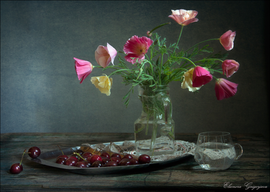 Эшшольция - цветок из рода мака. Его лепестки тонкие и нежные, как крылья бабачки