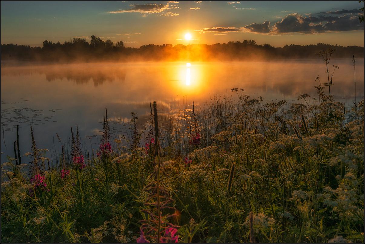 Тверская обл. оз.Лучанское, утро, солнце, туман