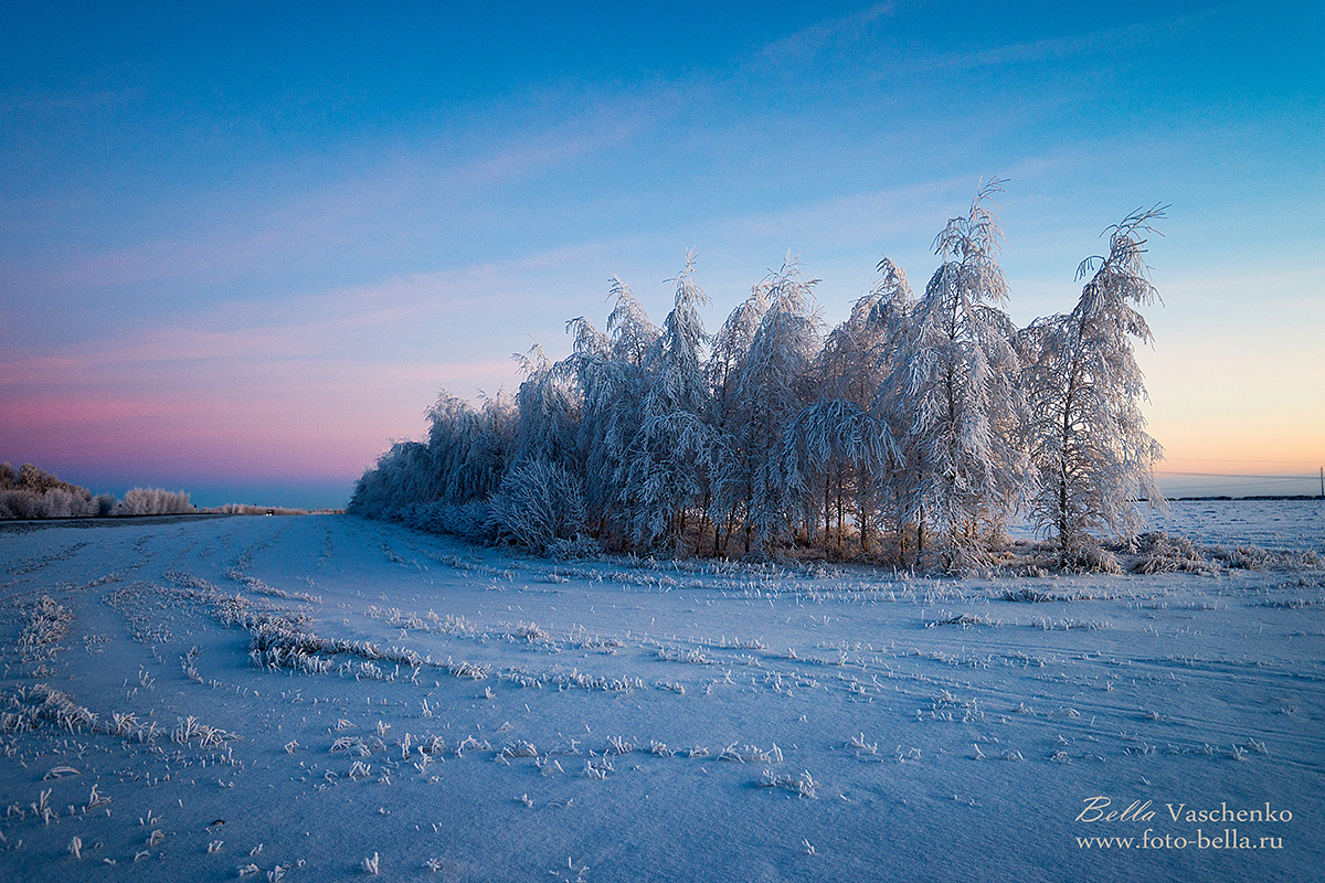#зима#пейзаж#снег#Бэлла Ващенко (фотограф)#photographer_bella_vaschenko