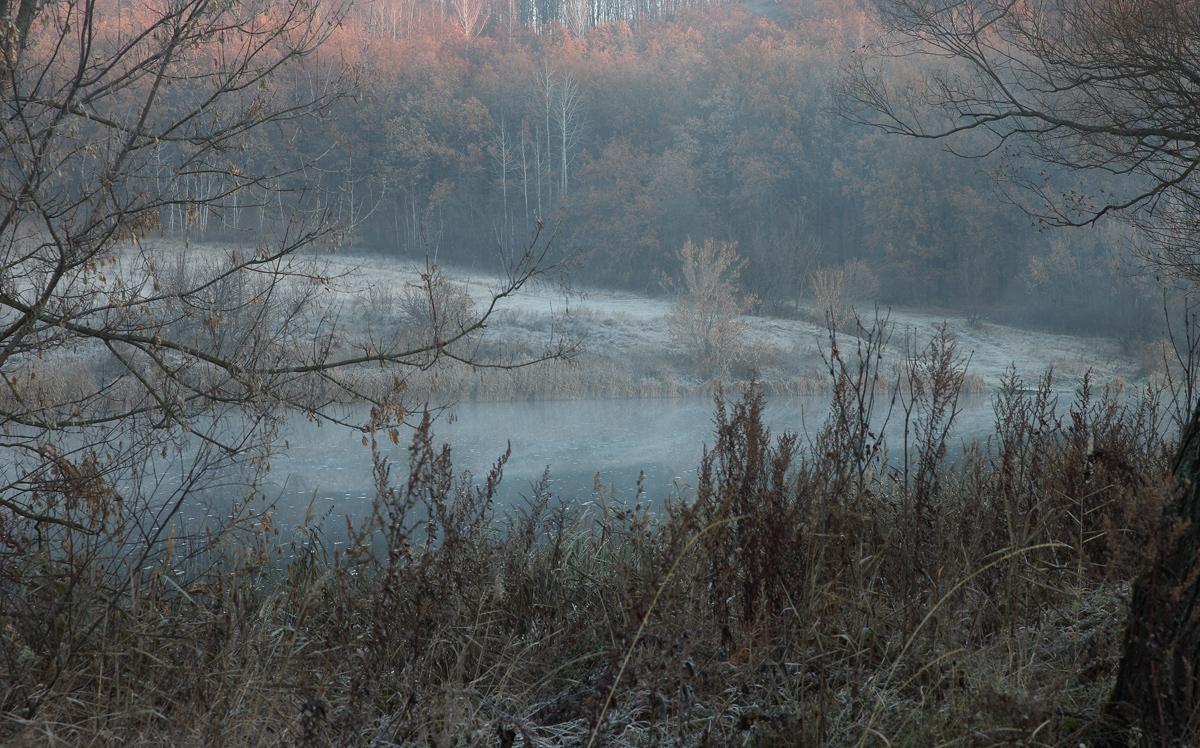 Снято 6 ноября на реке Красивая Меча Тульской области за 2 км до Шилово. С утра туман и морозец.