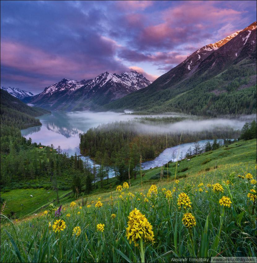 Россия, Республика Алтай, Катунский хребет, озеро Кучерлинское, июнь 2014